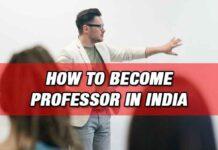 Career as Professor